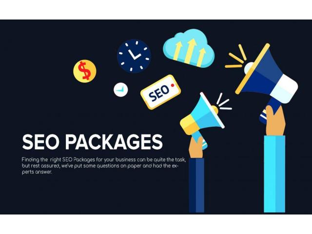 Get The Best SEO Packages In USA - SEO Ninja
