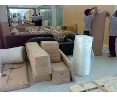 Tanu Logistics and Packers- Best Packers and Movers in Delhi