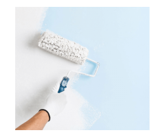 Home painter in delhi ncr | Home painting polishing in delhi | House painting contractors in delhi.