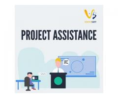 Project Service by VertexSoft.